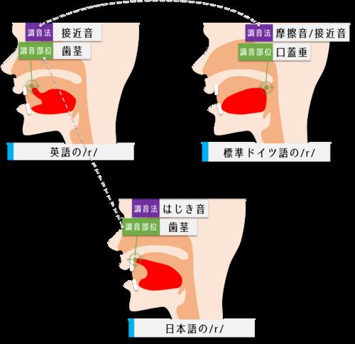 日本語と英語とドイツ語のrの相違点と共通点