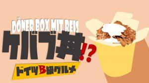 【ドイツB級グルメ】ケバブ丼!?Döner Box mit Reis【ドイツで米が食べたい】